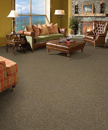 Carefree Carpet